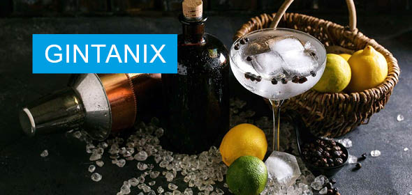 Header Events Softline Solutions Gintanix